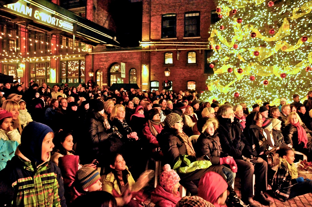 Christmas Tree lights at the Distillery District Christmas Market