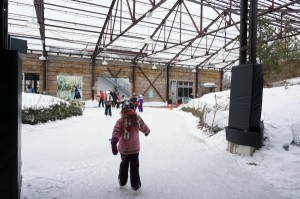 what to do in Torontobrickworks rink
