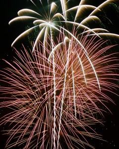 what to do in toronto kid-friendly toronto new year's eve 2014