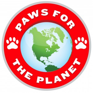 4 ways to reduce your paw print